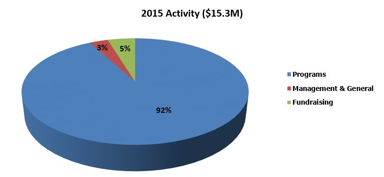 Pie Chart exhibiting activity for 2015