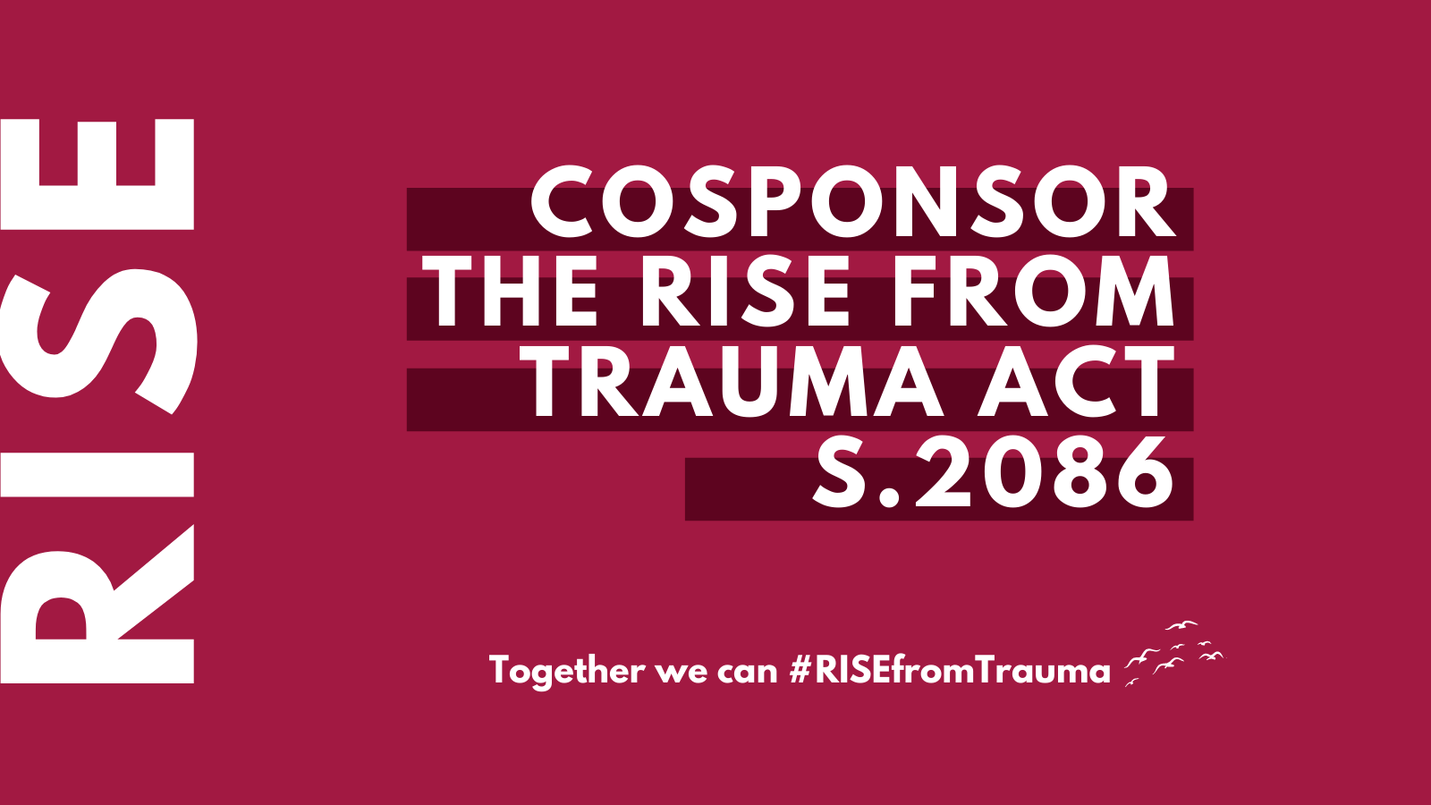 rise-from-trauma-graphic-twitter