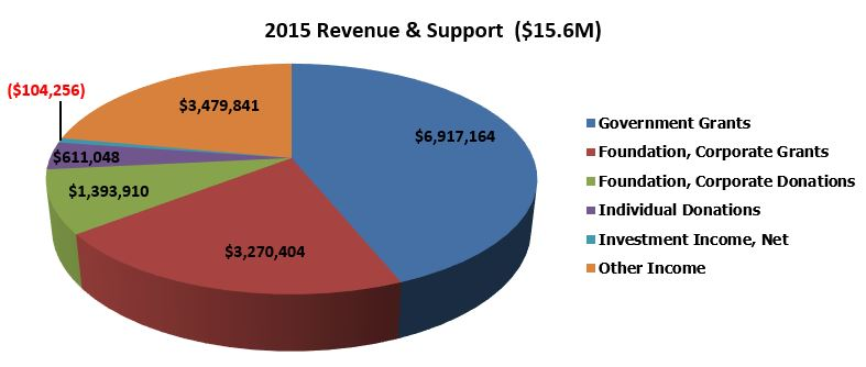 Pie Chart exhibiting revenue and support for 2015