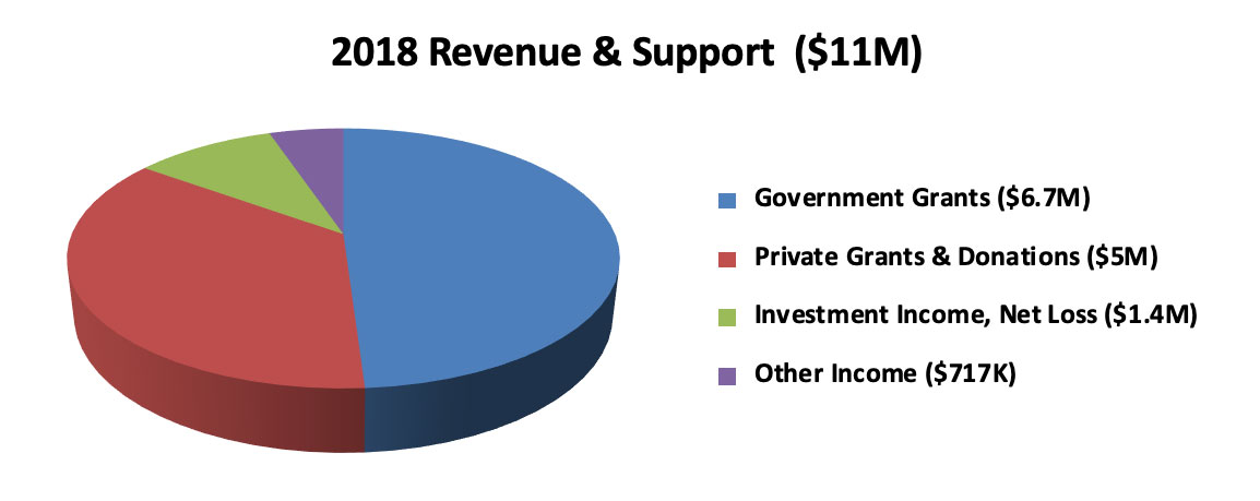 2018-revenue-and-support